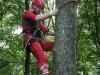 Baumsteigeisen im Einsatz