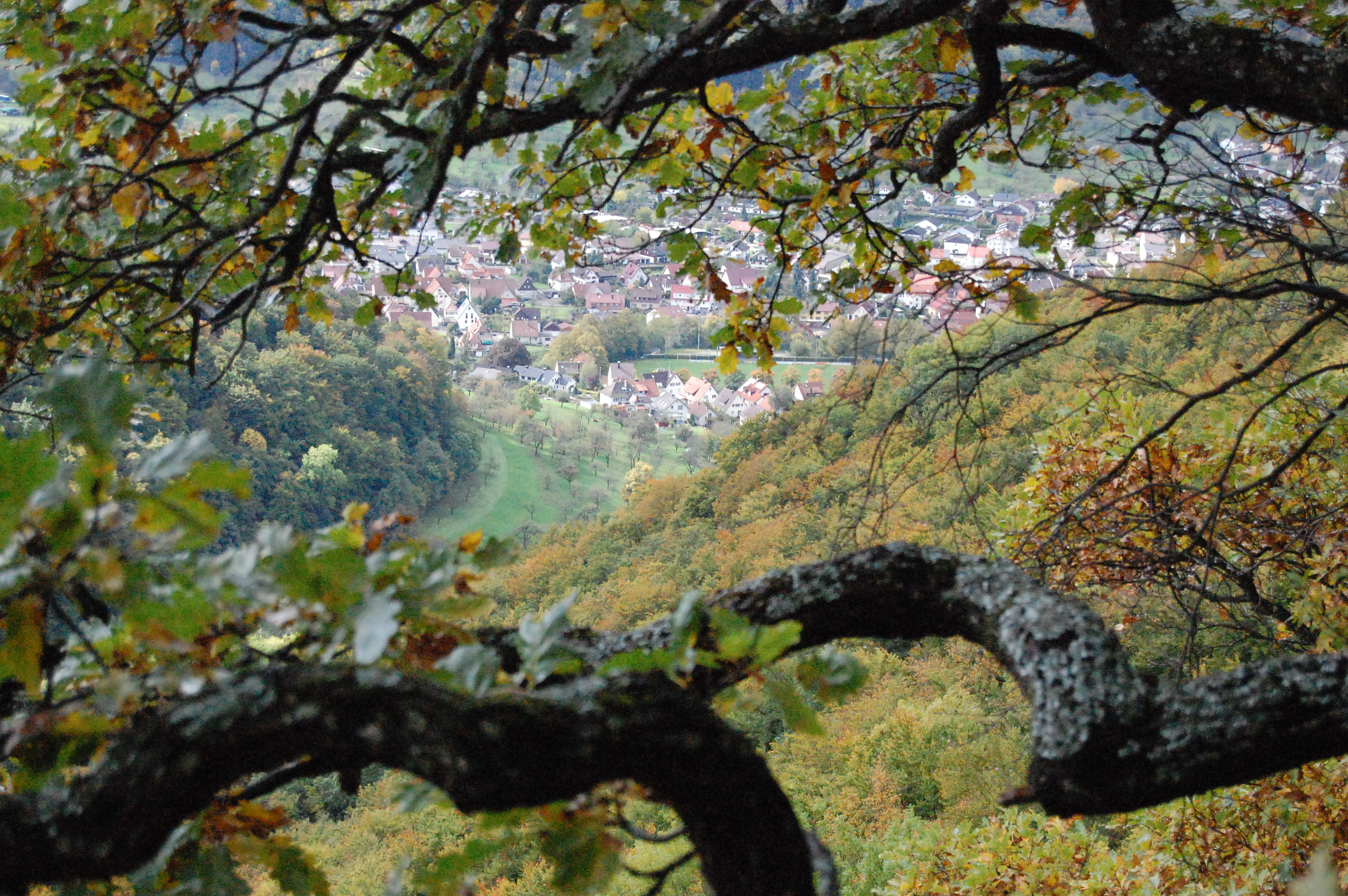 Blick ins Lenninger Tal.